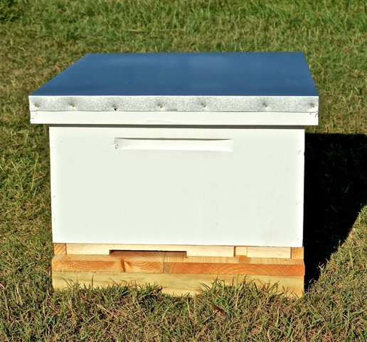 Established Hive of Bees w/all new equipment, 9 frames, 1 feeder